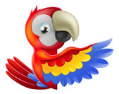 Red pointing cartoon parrot — Stock Vector