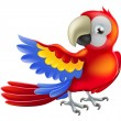 Red macaw parrot illustration — Stock Vector