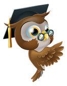 聪明的猫头鹰指点标志 — 图库矢量图片