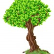 Tree Illustration - Stock vektor