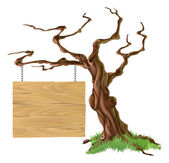 Znamení strom obrázek — Stock vektor