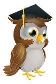 Graduate Owl — Stock Vector