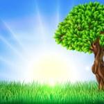Sunny Field Tree Background — Stock Vector
