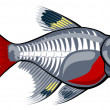 X-ray tetra cartoon fish — Imagen vectorial
