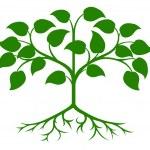 Stylised tree icon — Stock Vector #29826537