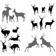 Stock Vector: Deer stag fawn and doe silhouettes