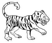 Stylised tiger illustration — Stock Vector