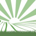 Sunshine Over Hill Fields — Stock Vector #33573319