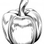 Vintage retro woodcut sweet pepper — Stock Vector #33679925