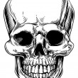 Vintage skull illustration — Vecteur #35054639