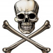 Jolly Roger Skull and Crossbones Sign — Imagen vectorial