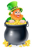 Leprechaun and pot of gold — Stock Vector