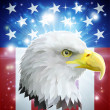 America eagle flag concept — Vetorial Stock