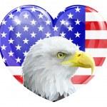 Eagle American love heart — Stock Vector #44445393