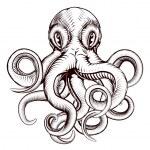 Octopus illustration — Stock Vector #46493211