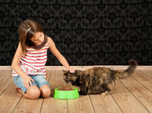 Girl feeding a cat — Stock Photo
