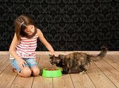 Girl feeding a cat — Stock Photo