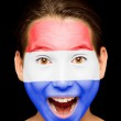 Girl with Netherlands flag painted on her face — Stock Photo #19710153