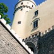 Castle Orlik — Stock Photo