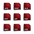 File type folder icon set — Image vectorielle