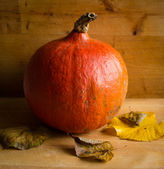 Fresh orange Hokkaido pumpkin on wooden background — Stock Photo