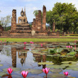 Main buddha Statue in Sukhothai historical park — Stock Photo #16805387