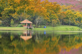 Pavillion in the autumn park — Stock Photo