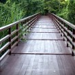 Old wooded bridge - Stock Photo