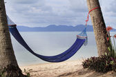 Romantic cozy hammock in the shadow of the palm — Stock Photo
