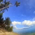 rajskiej wyspie — Zdjęcie stockowe #16880433