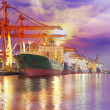 Container Cargo freight ship — Stock Photo #22779856