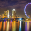 Singapore flyer — Stock Photo #23512991