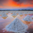 Salt fields — Stock Photo