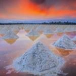 Salt fields — Stock Photo