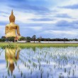 A biggest Buddha in Thailand — Stock Photo