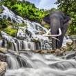 Mae Ya waterfall — Stock Photo #31176295