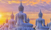 Many Buddha statue — Stock Photo