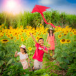 Mother and son in summer playing with kite — Stock Photo #36949275