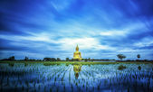 A biggest Buddha in Thailand — Foto Stock