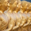 Many Buddhstatue — Stock Photo #42027929