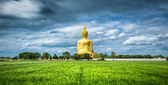 Wat Muang with gilden giant big Buddha statue — Stock Photo
