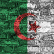 Algeria flag on wall — Stock Photo