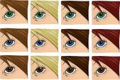A female eye set — Stock Photo