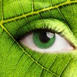 Leaf eye — Stock Photo
