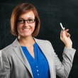Smiling teacher portrait — Stok fotoğraf