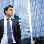 Handsome businessman portrait — Stock Photo #22617849