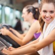 Постер, плакат: Woman training in a fitness club