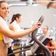 Womtraining in gym — Stock Photo #23610383