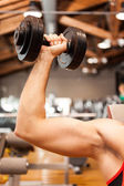 Biceps training — Stock Photo