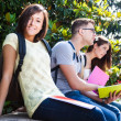 Group of students — Stock Photo #24039953